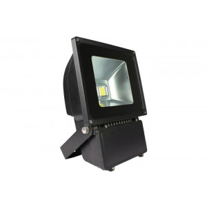Backpack Flood Light-Black 100W