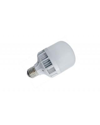 Birdcage Bulb 10W